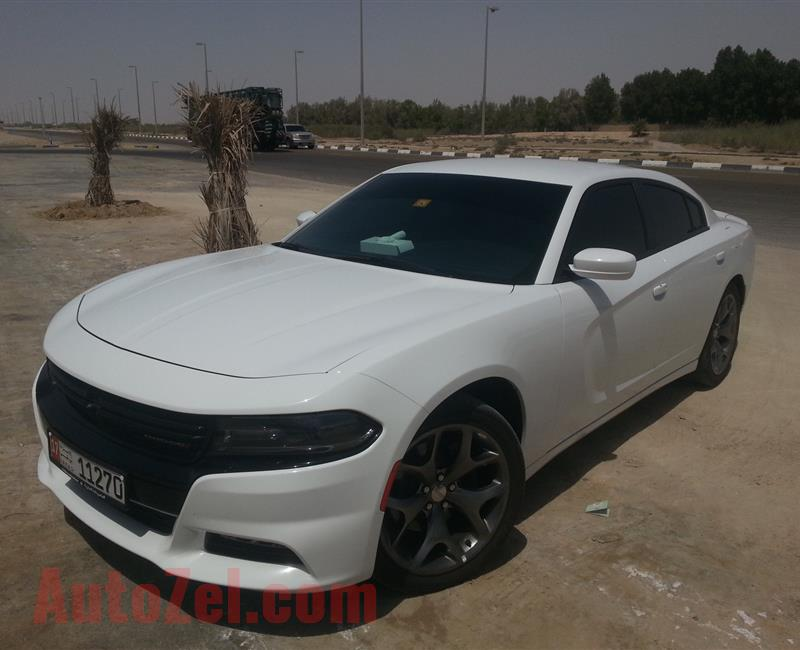 DODGE CHARGER 2016 - 3.6 - RALLY PLUS