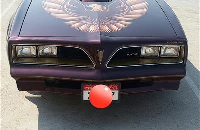 Pontiac Firebird Trans am 1978